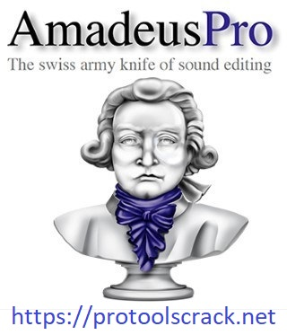 Amadeus Pro Crack